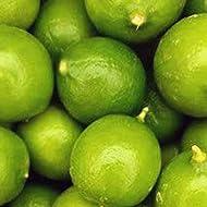 Melissa's Fresh Key Limes, (5 Lb)
