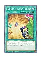 遊戯王 英語版 LDS2-EN081 Harpies' Hunting Ground ハーピィの狩場 (ノーマル) 1st Edition