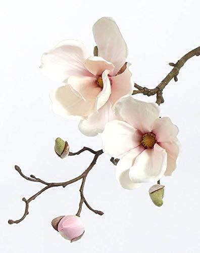 artplants.de Künstlicher Magnolien Zweig MALBINE, 2 Blüten, weiß - rosa, 50cm - Deko Zweig - Künstliche Magnolie