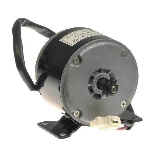 Razor Motor de 24 V 250 W para scooter eléctrico E300 accionado por cadena