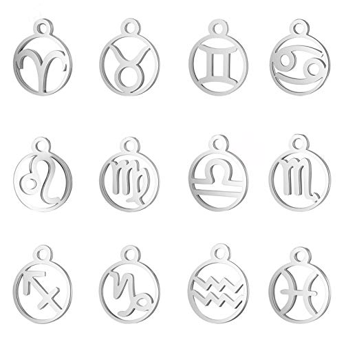 UNICRAFTALE 12pcs Ring with 12 Constellation Pendants 304 Stainless Steel Mixed Sign Charms 1.6mm Small Hole Zodiac Sign Charm for DIY Necklace Bracelet Jewelry Making Craft