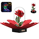 SWEET DIARY Beauty and the Beast Rose DIY Kit, Christmas Gifts, Mothers Day Gifts, Red Silk Rose with Fallen Petals and RGB+White Led light in a Glass Dome on Wooden Base for Valentine's Day