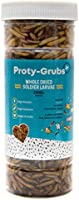 PROTYGRUBS Black Soldier Fly Larvae - 100% Natural, High Protein Fish Food for Arowana, Flowerhorn, Oscar, Parrots, and...