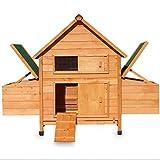 zooprimus Poulailler en Bois pour Jardin extérieure Cage Canard avec Nichoir 143 x 49 x 93 cm Modèle: 156 Chicken