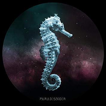 Paradisnoir - EP