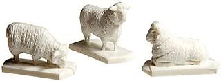 Best black sheep white sheep game Reviews