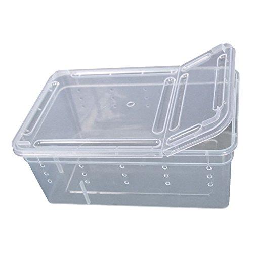KaariFirefly - Scatola per Alimentazione per rettili Leggera, in plastica Trasparente, per Allevamento di Insetti Anfibi