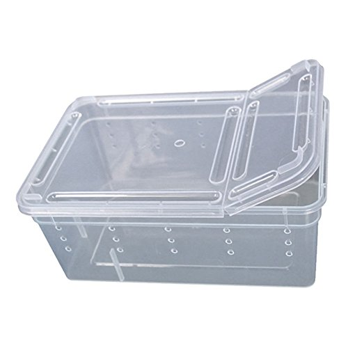 qingsb Reptilienfutterbox für Amphibien Insekten Reptilien Zuchtbox Transportboxen