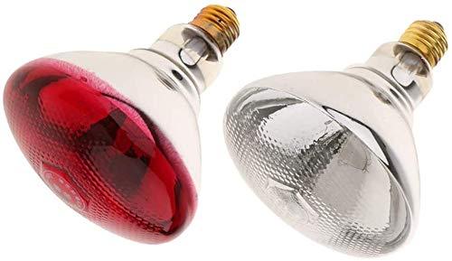 FTFDTMY Calentador de Reptiles, 2pcs E27 Luz Cría lámpara de Infrarrojos Calentador Emisor
