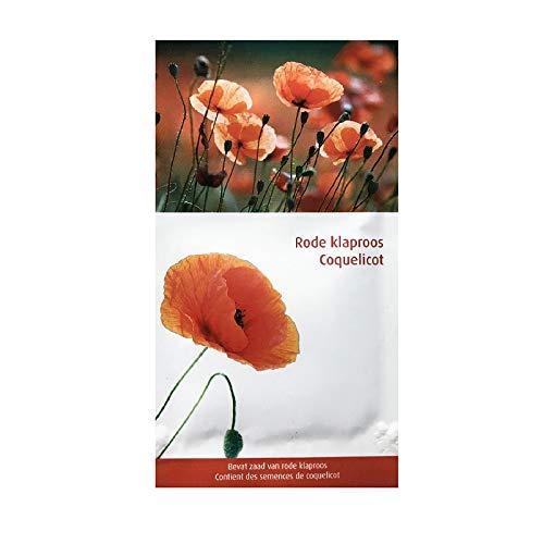 Amapola de Flandes - semillas de flores