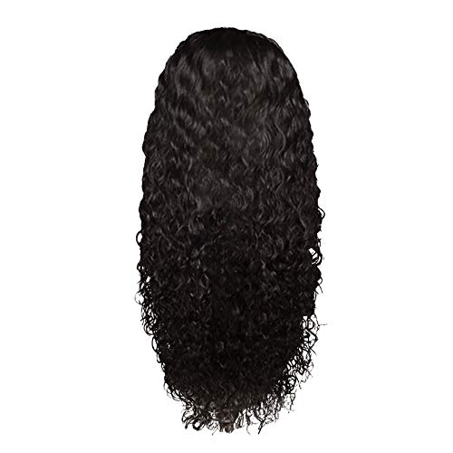 m·kvfa Peruvian Curly Human Hair Wig Glueless Lace Front Human Hair Wet and Wavy Water Curly Hair Wigs 24in (Black)