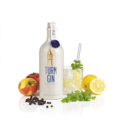TURM GIN London Dry Gin - Echt nordisch, echt gut. | Premium Bio-Gin aus Norddeutschland | Holsteiner Cox und 15 norddeutsche Botanicals [0,7 Liter]