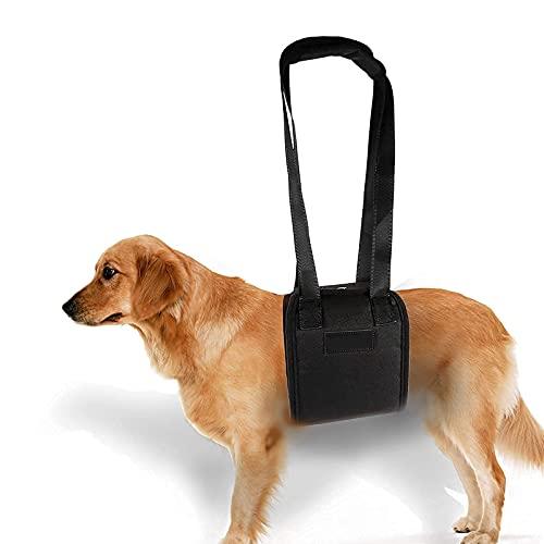 yosoo Hundegeschirr, Gürtel AUX für die Haustiere Geschirr Klassische Traversenlift für die ältere Tiere oder Krank-Hund mit und Aussteigen Treppen, und Aussteigen Fahrzeuge