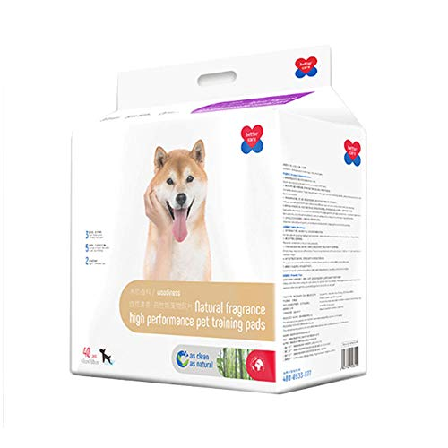 HUILI Superabsorberande husdjursträning uppställningar, gräsmattor-toalett-träning-villkor läckagesäker mattor för att skydda golvet, dina mattor och möbler som eliminerar lukt, S