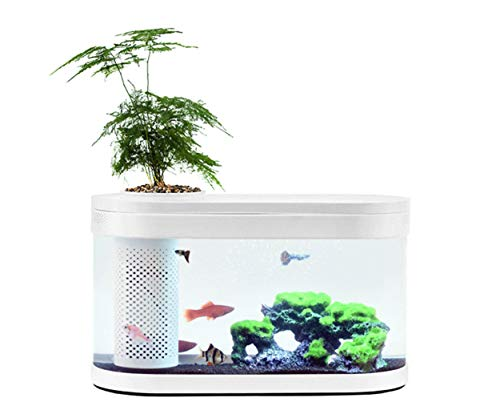 Sheebo 2.5 Gallon Modern Aquarium Kit, Small Amphibious Ecology Fish Tank with LED Ambient Light, Filtration System Quiet Water Pump Small Plant Decor Ecosystem for Betta Fish and Various Fish