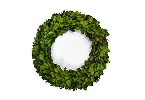 Mini Preserved Boxwood OFFicial site Wreath Candle Interior Home Ranking TOP3 Deco for Ring