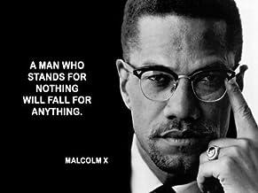 Spot Dog Malcolm X 24X36 Poster SDG #SDG521631