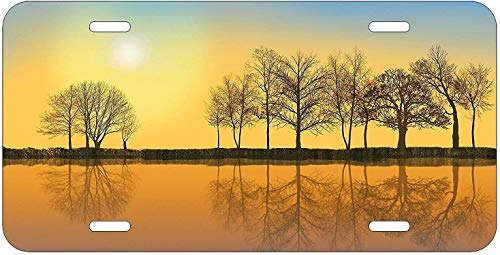 Dom576son License Plate Frame, Reflective Trees on Lake Metal Sign License Plate 6' x 12' Auto Car Tag License Sign