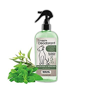 doggie deodorant
