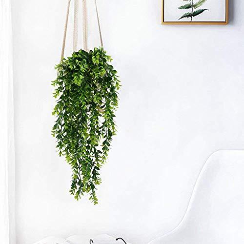 MIHOUNION Plantas