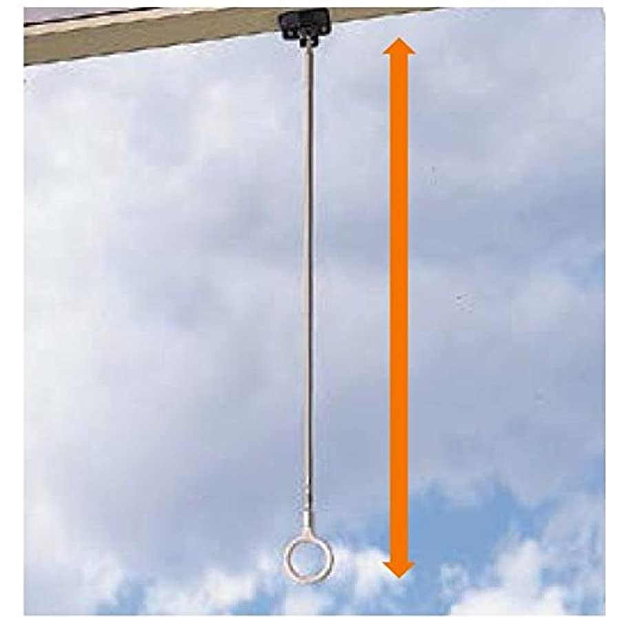 テラス取り消す消化器リクシル テラス オプション クリーンハンガー (2本入り) 8LFY22ZZ 『物干し 屋外』