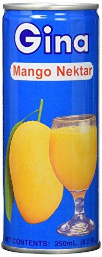 Gina Mangonektar, leicht gesäuert; mind. 35% Fruchtsaftgehalt (1 x 250 ml Packung)