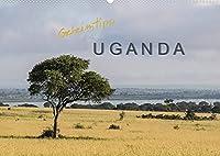Geheimtipp Uganda (Wandkalender 2022 DIN A2 quer): In Uganda begegnet man viel Natur aber (noch) wenig Touristen. (Monatskalender, 14 Seiten )