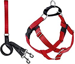 2 Hounds Design Freedom No Pull Harness With Leash