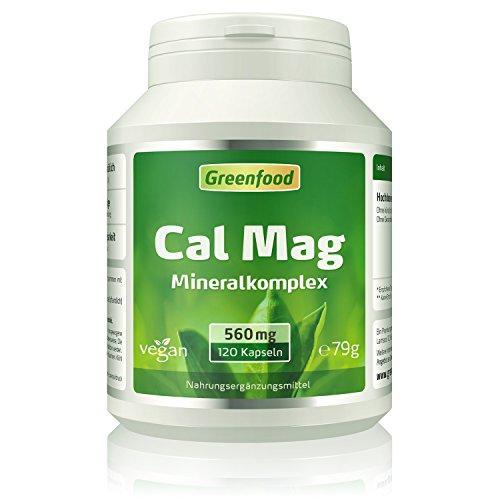 Calcium + Magnesium, 560 mg, 120 Kapseln – hohe Bioverfügbarkeit, im idealen Verhältnis 2:1 (Calcium zu Magnesium). Wichtig für Zähne, Knochen und Muskeln. OHNE künstliche Zusätze. Ohne Gentechnik. Ve