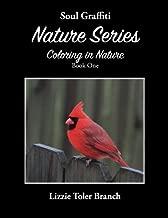 Soul Graffiti Nature Series: Coloring in Nature Book One