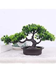 TIED RIBBONS Artificial Bonsai Tree for Office Home Table Shelf Entrance Decoration - Artificial Plants for Home Decoration (Green)