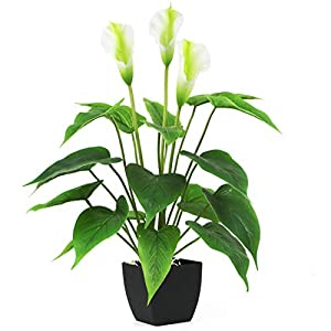 Bird Fiy Artificial Plants Flowers, Real Touch Fake Calla Lily Plant Greenery Shrubs Silk Flower for Wedding Bridle Bouquet Indoor Outdoor Home Kitchen Office Table Decor (White, 1Pcs/Black Pot)