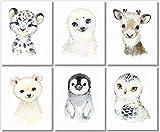 Arctic Baby Animals Wall Art Prints - Nursery Decor - Set of 6-8x10 - Unframed - Watercolor