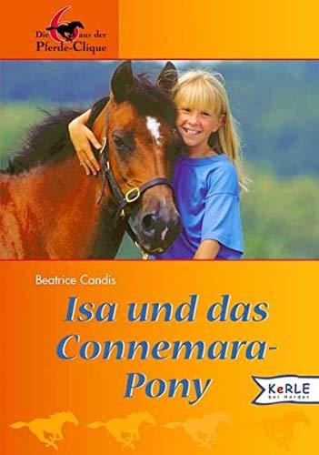 Isa und das Connemara-Pony: Die 6 aus der Pferde-Clique