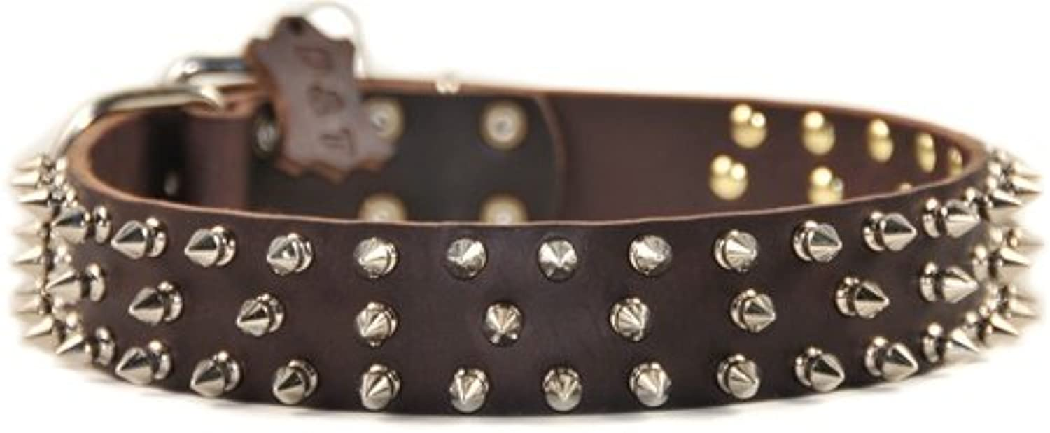 Dean and Tyler TRIPLE THREAT , Leather Dog Collar with Nickel Plated Spikes  Brown  Size 32Inch by 11 2Inch  Fits Neck 30Inch to 34Inch