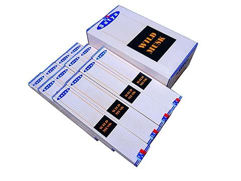 ペイン仲人マーティンルーサーキングジュニアSATYA(サチャ) ワイルドムスク香 スティック WILDMUSK 12箱セット