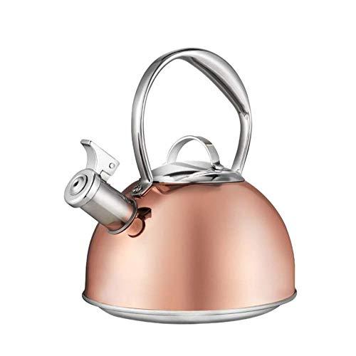 Tetera silbante 2.6 litros de Acero Inoxidable Bebida Moderna Whistling Kettle té de la Cocina Caliente Camping Gas halógeno eléctrico Vitrocerámica WHLONG