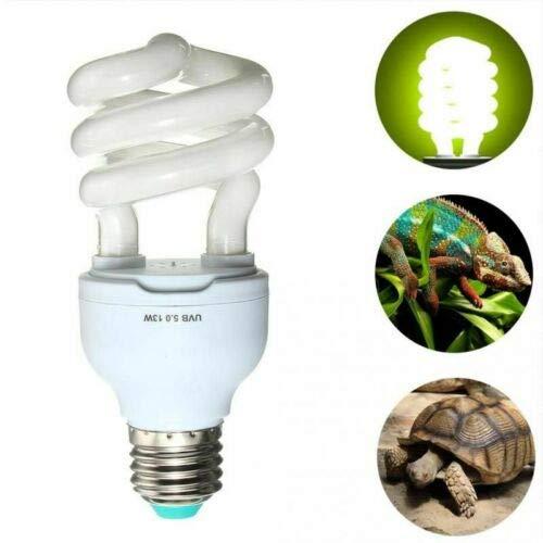 HoneyCare Reptielen & Amfibieën UVB 10.0 lamp 13W, licht compacte gloeilamp Globe 13W calcium reptiel hagedis schildpad