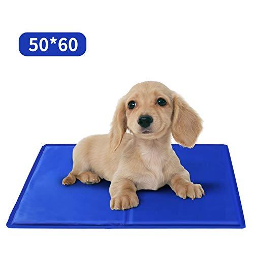 Nobleza – Alfombrilla refrescante para Mascotas Grandes. Auto refrigerante No tóxico. Ideal para para Perros, Gatos en Verano. 60 * 50 cm, Color Azul, M