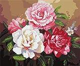 JXFFF 40x50cm No Frame Tamaño Personalizado y Foto Pintar por Numeros para Adultos Pintura Pegatinas de Pared Pintura al óleo Digital Pintada a Mano Arte decoración de la Boda Flores