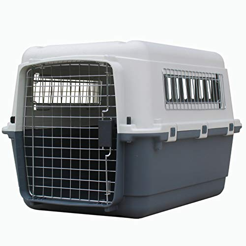 Transportines para Perros Medianos
