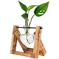 HUABEI Love Shape Air Plant Terrarium Wooden Stand Bulb Glass Vase