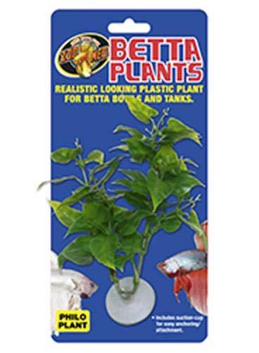 Zoomed Betta Plante Philo pour Reptile/Amphibien