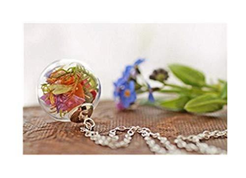 Halskette mit echten irischen Wildblumen, Mini-Terrarium