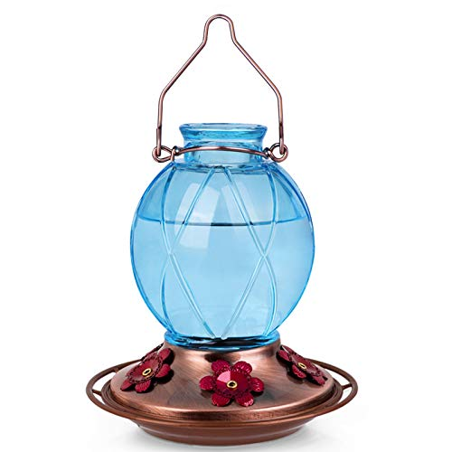 BOLITE 18016-B Hummingbird Feeder, Glass Hummingbird Feeder for...