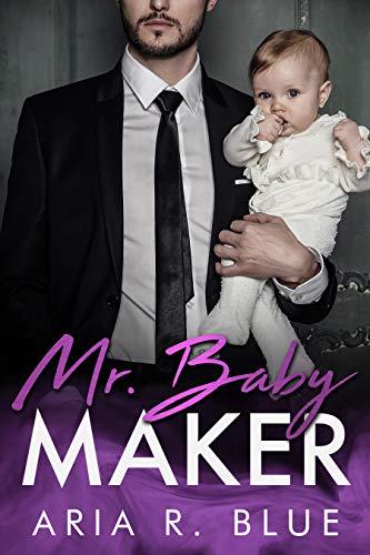 Mr. Baby Maker: A Secret Baby Romance Novella