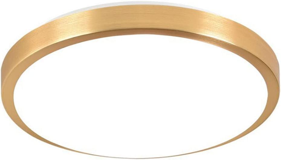 Cheap SALE Start LIWENGZ Ceiling Light Modern and Flush Mount Fixture Max 62% OFF Nigh Simple