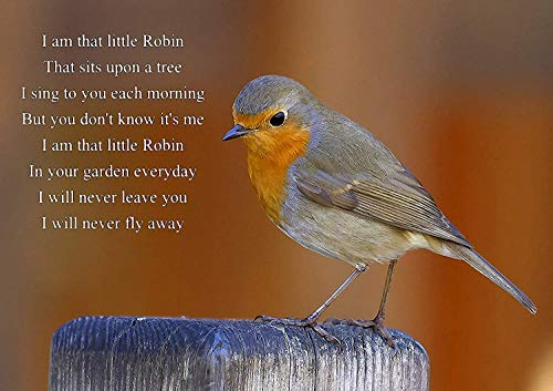 LIFE INSPIRATIONAL/MOTIVATIONAL ROBIN LOVED ONES FROM HEAVEN WATCHING OVER YOU POSTER / PRINT / PICTURE