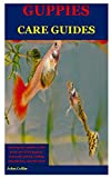 Guppies Care Guides: Amazing Tips Needed To Take...