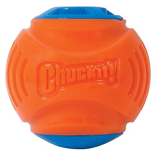 ChuckIt! Locator Sound Ball, Medium